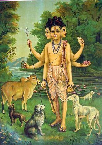 hindu dog3
